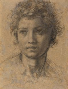 Andrea del Sarto (Andrea d' Agnolo), 1486-1530, Italian, Study for the Head of Saint John the Baptist, c. 1523. Black chalk, 13 x 9 1/8 in. National Gallery of Art, Washington, Woodner Collection. High Renaissance.