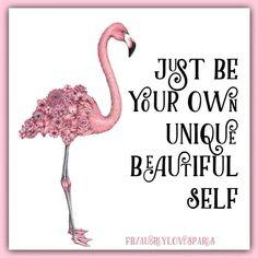 Just be your own Unique beautiful self Flamingo Gifts, Flamingo Decor, Pink Flamingos, Flamingo Funny, Yoga Studio Design, Yoga Inspiration, Flamingo Pictures, Flamingo Birthday, Pink Bird