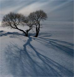 Winter Sun | by Oleg Melnikov
