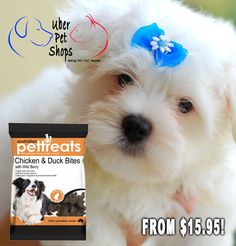 FROM $15.95! Healthy Chicken Treats for Pooch! CLICK ON THE LINK TO SHOP NOW! https://www.uberpetshops.com/collections/pet-treats Guaranteed safe checkout: PAYPAL | VISA | MASTERCARD Click BUY IT NOW To Order Yours! #healthypets #healthypetsproducts #pettreats #healthydogs #healthydogfood #healthyfood