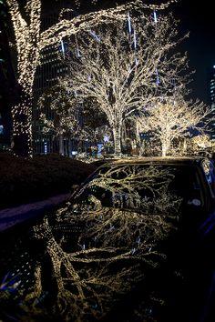 White lights of winter in Seoul by Seoul Korea, via Flickr