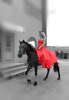 Grey Horse and red dress ♥️