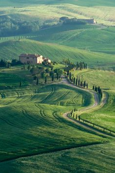 Countryside of Val d'Orcia Tuscany, Italy by Phil Bird