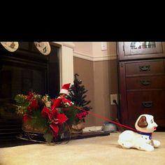 The Elf on the Shelf - Joy-Riding!