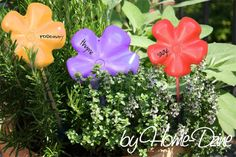 Home-Dzine - Herb garden name tags. Here I go again... thinking up ways to recycle plastic bottles. I have done quite a few projects using these flower design cut from the base of a plastic 2 litre bottle, and you will be able to make an amazing chandelier in a future issue of Easy DIY magazine, so keep an eye out. http://www.home-dzine.co.za/garden/garden-herb-sticks.htm