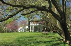MARYLAND: Audubon Naturalist Society - Woodend Nature Sanctuary, Chevy Chase, Montgomery County, MD.