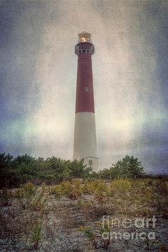 Barnegat Lighthouse in New Jersey. To view or purchase my prints, visit joan-carroll.artistwebsites.com iPhone covers can be purchased at joan-carroll.pixels.com THANKS!