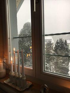 Shabby, Christmas Tree, Switzerland, Christmas, Teal Christmas Tree, Xmas Trees, Xmas Tree, Christmas Trees