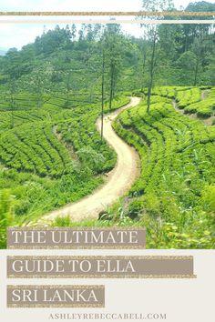 Ella Sri Lanka: The Ultimate Travel Guide - Ashley Rebecca Ella Sri Lanka, Adam's Peak, Arch Bridge, Lots Of Money, Beautiful Sites, Ultimate Travel, Train Travel, Travel Couple, Asia Travel