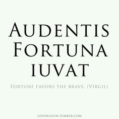 Audentis Fortuna Iuvat - Fortune Favors The Brave.