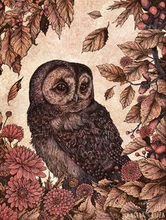 owl, leaves, fall, acorns, flowers