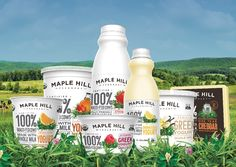 Why Grass Fed Matters: My Interview with Maple Hill Creamery - Wholify