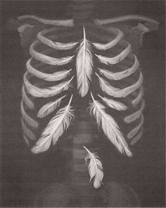 Feather lungs