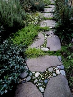 If you are looking for Garden Path Design Ideas, You come to the right place. Here are the Garden Path Design Ideas. This article about Garden Path Design Ide. Unique Garden, Diy Garden, Shade Garden, Garden Plants, Mosaic Garden, Natural Garden, Mosaic Pots, Garden Bed, Stone Garden Paths