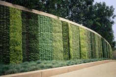 Green, or living, walls are a great example of a simplicity and style that suit block and strip planting. Strips and blocks of evergreen pla...