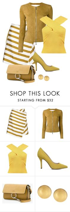 """Untitled #747"" by bsimontwin ❤ liked on Polyvore featuring Drome, Boohoo, Nine West, Chloé and Mémoire"