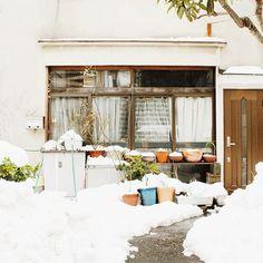 Snow in Shimokitazawa!