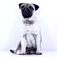 Plush Pug Pillow