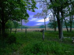 Peaceful Pasture Photo by Roe Rader -- National Geographic Your Shot
