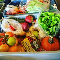 Bins looking Fabulous today  #teamleeandmarias #supportlocal #supportlocalfarmers #spreadthehealth