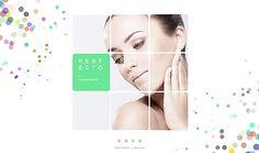 Template 62015 - Perfecto Plastic  Responsive Website Template