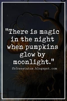 Halloween Quotes And Sayings, \'There is magic in the night when pumpkins glow by moonlight.\' quotes magic Halloween Quotes And Sayings With Pictures And Images Halloween Tags, Happy Halloween Quotes, Halloween Pictures, Scary Halloween, Fall Halloween, Halloween Pumpkins, Quotes About Halloween, Funny Halloween Sayings, Halloween Chalkboard