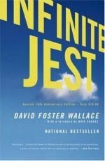 """""""A gargantuan, mind-altering comedy about the pursuit of happiness in America. Set in an addicts' halfway house and a tennis academy, and featuring the most endearingly screwed-up family to come along in recent fiction, 'Infinite Jest' explores essential questions about what entertainment is and why it has come to so dominate our lives; about how our desire for entertainment affects our need to connect with other people; and about what the pleasures we choose say about who we are. """""""