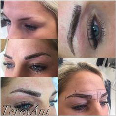 hd brows sverige