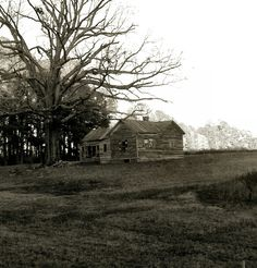 Old abandoned house, North Carolina Country scene.
