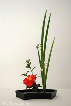 Ikebana Candle Arrangements, Ikebana Flower Arrangement, Ikebana Arrangements, Flower Vases, Floral Arrangements, Centerpieces, Japanese Flowers, Japanese Art, Sweet Violets