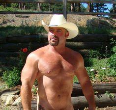 Hello cowboy