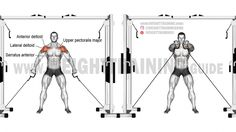Double cable front raise exercise