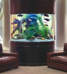 380 gal Moon View Bow Front Fish Tank with lots of extras. Must see to appreciate. (contact info hidden) in Phelan, CA (sells for $2,000)