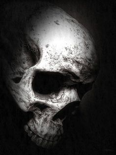 #Skulls, #Calaveras, #Bones, #Huesos Más