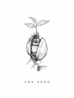 """Excited to share this item from my shop: Print of Original Drawing """"The Seed"""" Kritzelei Tattoo, Tattoo Drawings, Art Drawings, Drawings About Love, Tattoo Flash, Tattoo Sketches, Drawing Art, Drawing Ideas, Ps Wallpaper"""