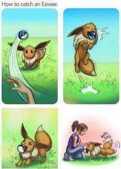 #pokemon #pokemongo #pokemoncommunity #shinypokemon