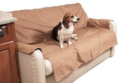Protect the sofa in your RV, trailer, or home with these durable, waterproof sofa protectors from Canine Covers. Sofa Throw Cover, Sofa Covers, Sofa Protector, Pet Travel, Large Dogs, Dog Bed, Sofas, Sweet Home, Pets