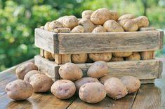 Potato Box