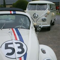 Old VW bug and bus as the wedding transportation!