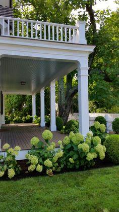 Always loved hydrangeas wrapping around a porch Back Porches, Gazebo, Pergola, Hydrangea, Kiosk, Arbors, Hydrangea Macrophylla