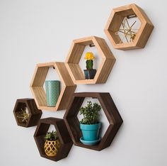 Create your own honeycomb wall of hexagon shelves! Available on Etsy made by Taute. $46 for set of 3 hexagon shelves