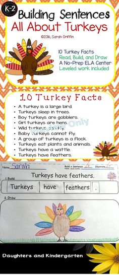 Turkey Facts for Kids Thanksgiving Writing Center   Building Sentences