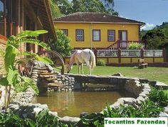 Fazenda em Minas Gerais