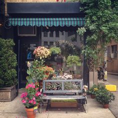 I want a sweet little successful store.  Blue Water Flowers | New York
