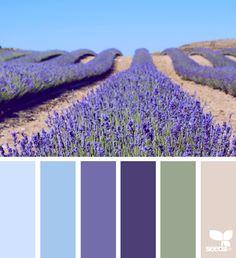 { color field } image via: @carolyn.eve