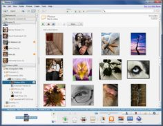 Google's Picasa is the best free piece of photo managing and editing software you can find. What does it do? The better question to ask is what it doesn't. At its most basic, it's a photo manager and viewer. Fire up Picasa, and you can browse through all of your photos, organized by folder, as well as by the year they were stored on your hard disk.