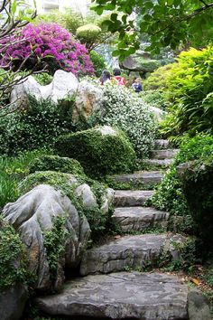 garden stone path with steps