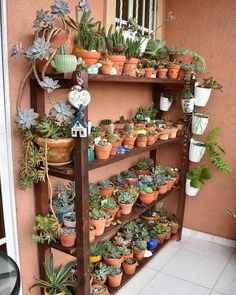 Wooden shelves like this one are great for displaying succulents! They give you space for so many plants and keep your collection looking… Balcony Plants, House Plants Decor, Plant Decor, Garden Plants, Indoor Plants, Air Plants, Succulent Gardening, Cacti And Succulents, Planting Succulents
