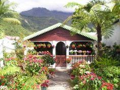 Le circuit des Jardins & Cases Créoles –  Balades Réunion
