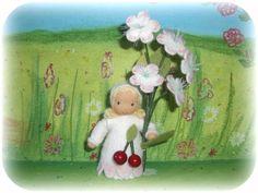 Kirschblüte Susannelfe